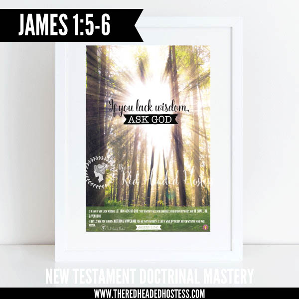James 1:5-6 If you lack wisdom, ask God New Testament Doctrinal Mastery illustrated poster www.theredheadedhostess.com